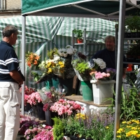 flower stall at the market