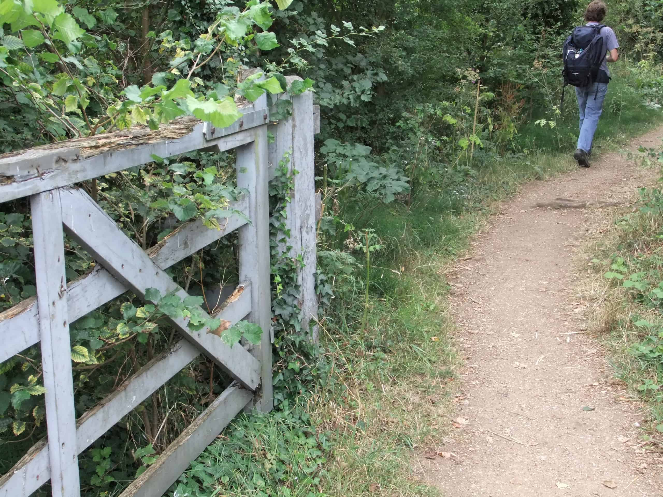 Routes that alternate between riverside towpaths and high hedgerows