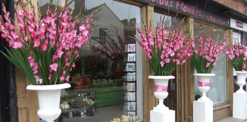 Huge floral diplays of pink gladioli in giant urns outside a flower shop