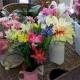 Spring has sprung in Lewis Baker