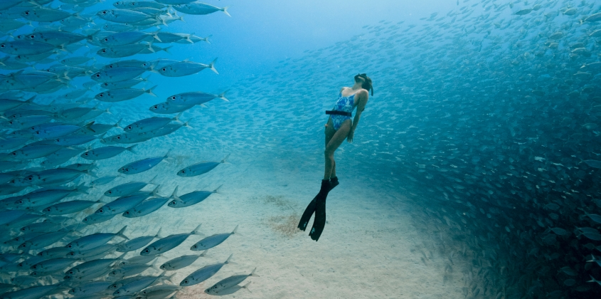 ocean_ff_promo_image_photo_by_travis_burke_freediver_chelsea_yamasee