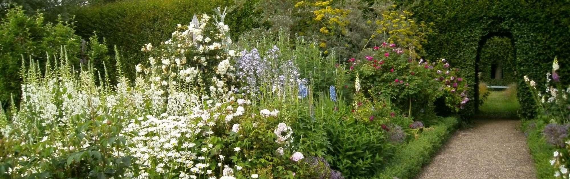 herbaceous_borders