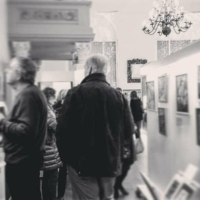 Museum Visitor Survey